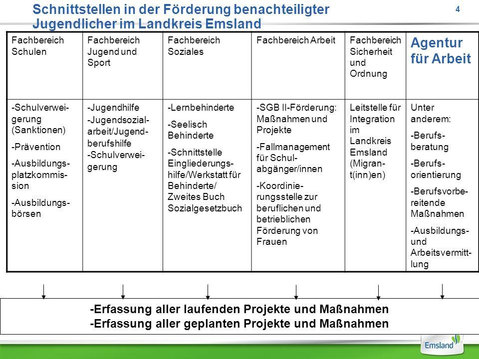 Schnittstellen in der Förderung benachteiligter Jugendlicher im Landkreis Emsland