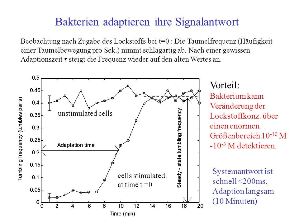Bakterien adaptieren ihre Signalantwort