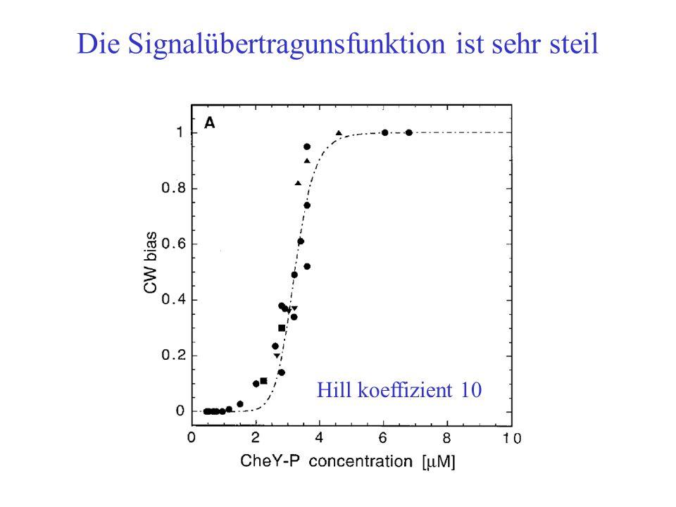 Die Signalübertragunsfunktion ist sehr steil