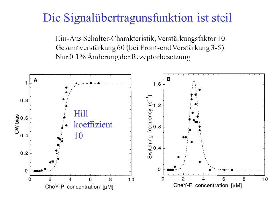 Die Signalübertragunsfunktion ist steil