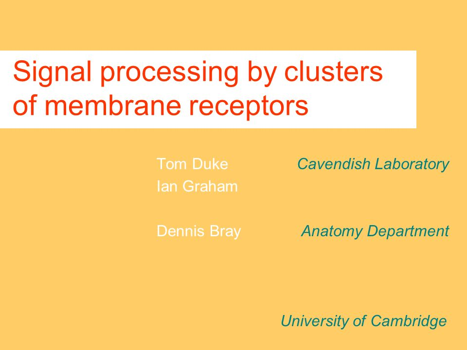 Signal processing by clusters of membrane receptors