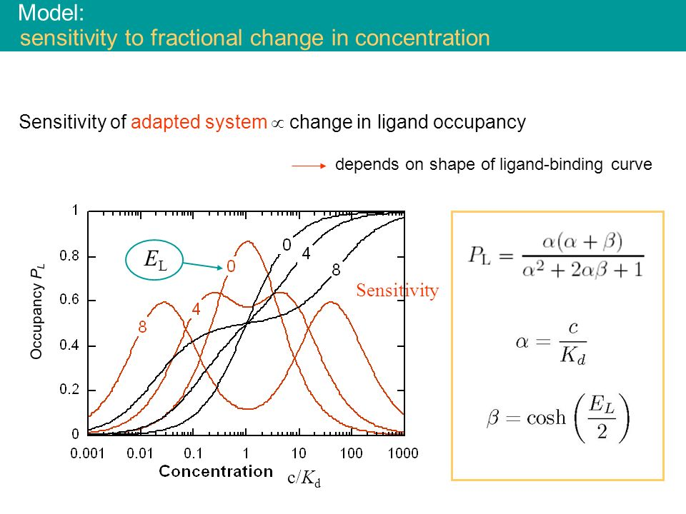Model: sensitivity to fractional change in concentration