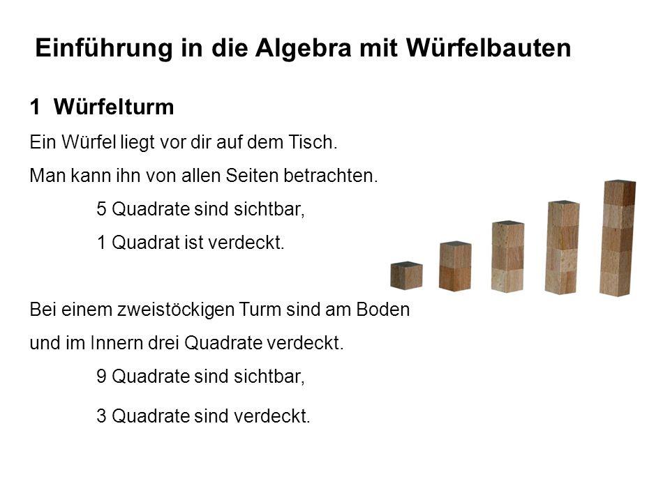 Einführung in die Algebra mit Würfelbauten