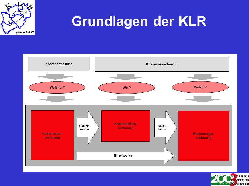 Grundlagen der KLR Kostenerfassung Welche Wo Wofür