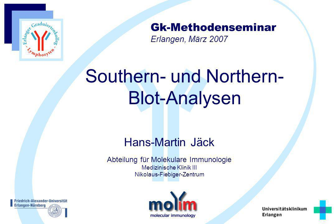 Southern- und Northern- Blot-Analysen
