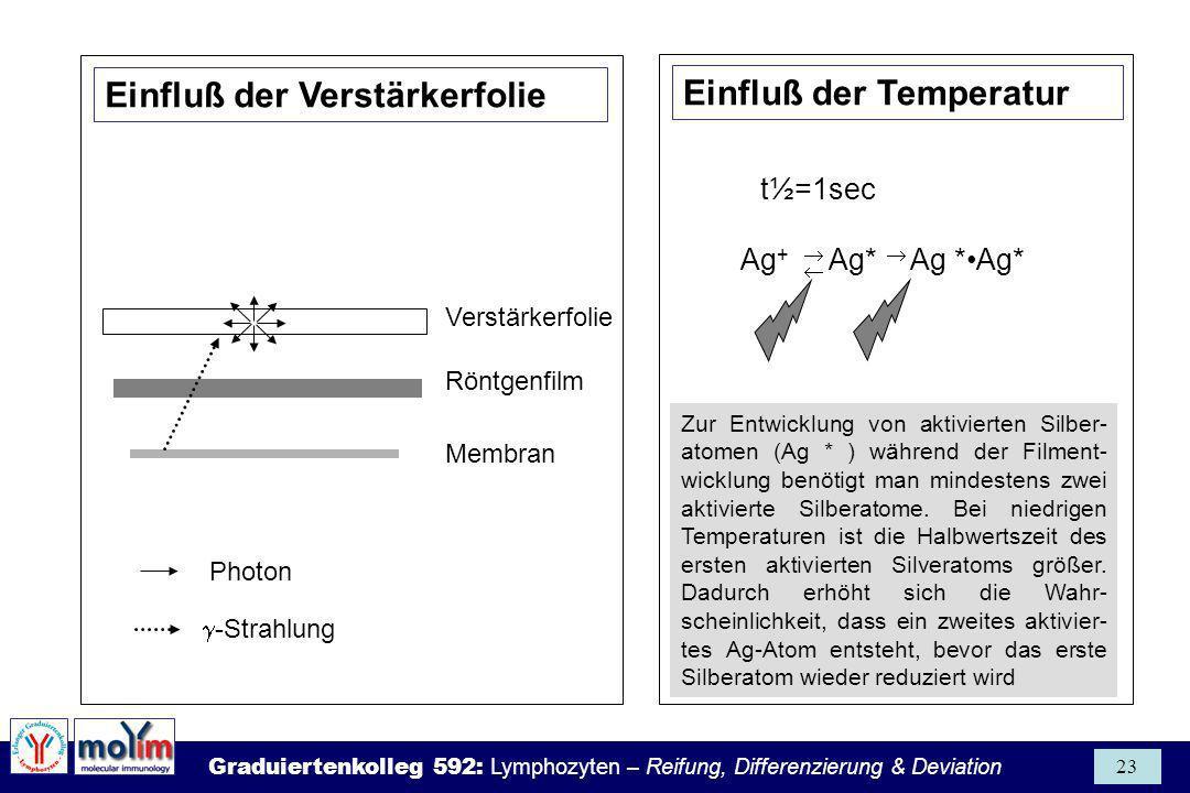 Einfluß der Temperatur Einfluß der Verstärkerfolie