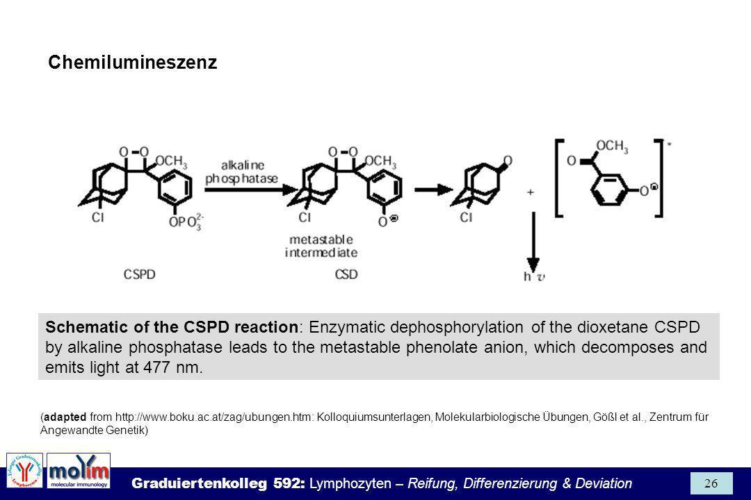 Chemilumineszenz