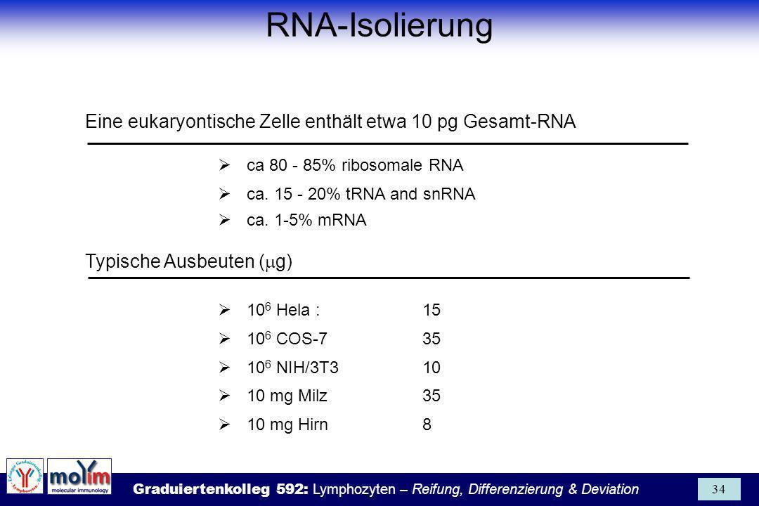 RNA-Isolierung Eine eukaryontische Zelle enthält etwa 10 pg Gesamt-RNA