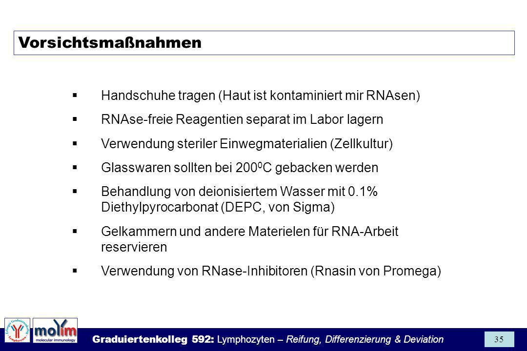 Vorsichtsmaßnahmen Handschuhe tragen (Haut ist kontaminiert mir RNAsen) RNAse-freie Reagentien separat im Labor lagern.