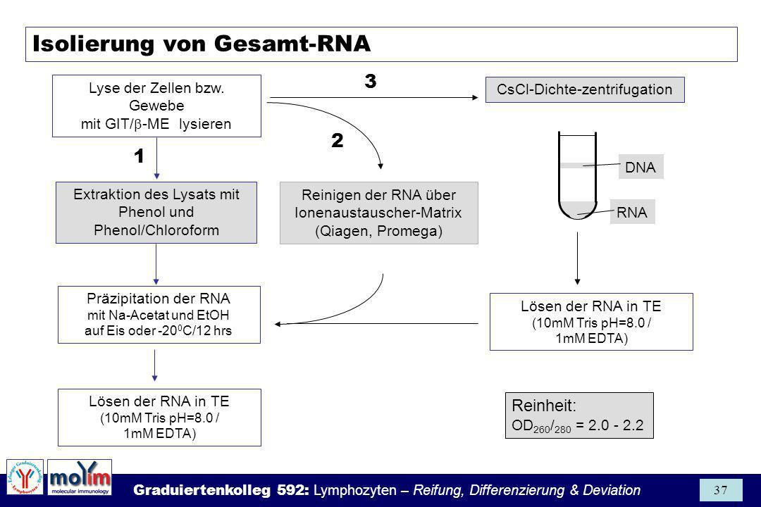 Isolierung von Gesamt-RNA