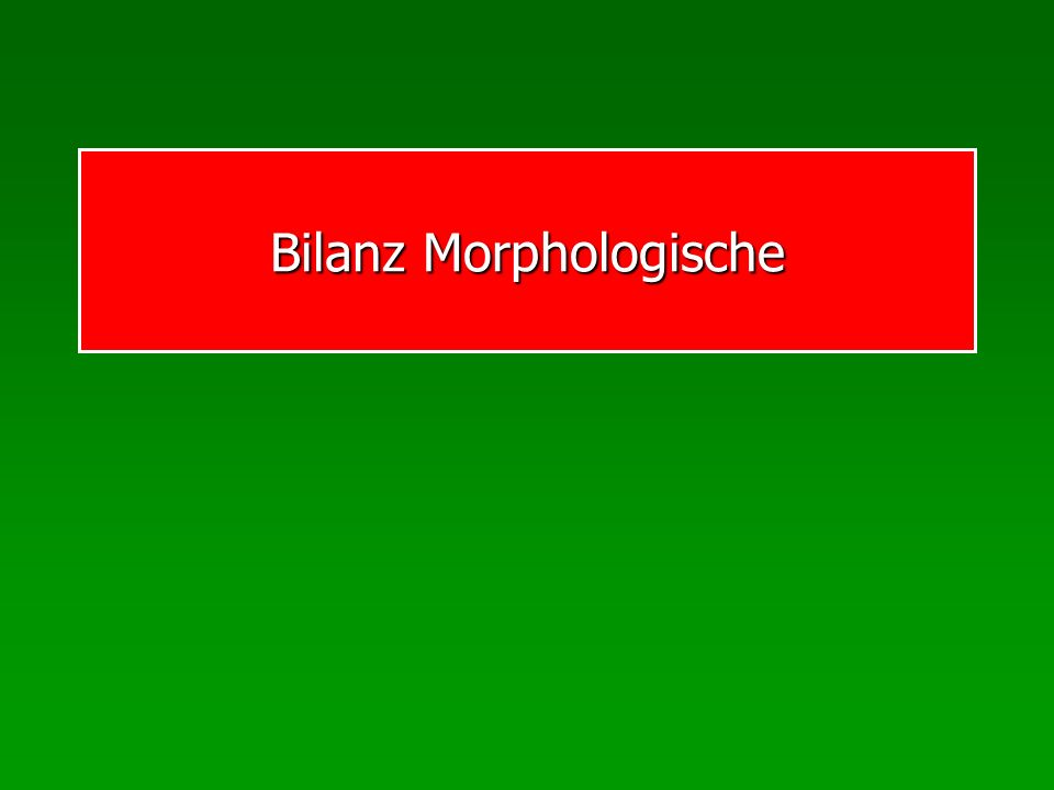 Bilanz Morphologische