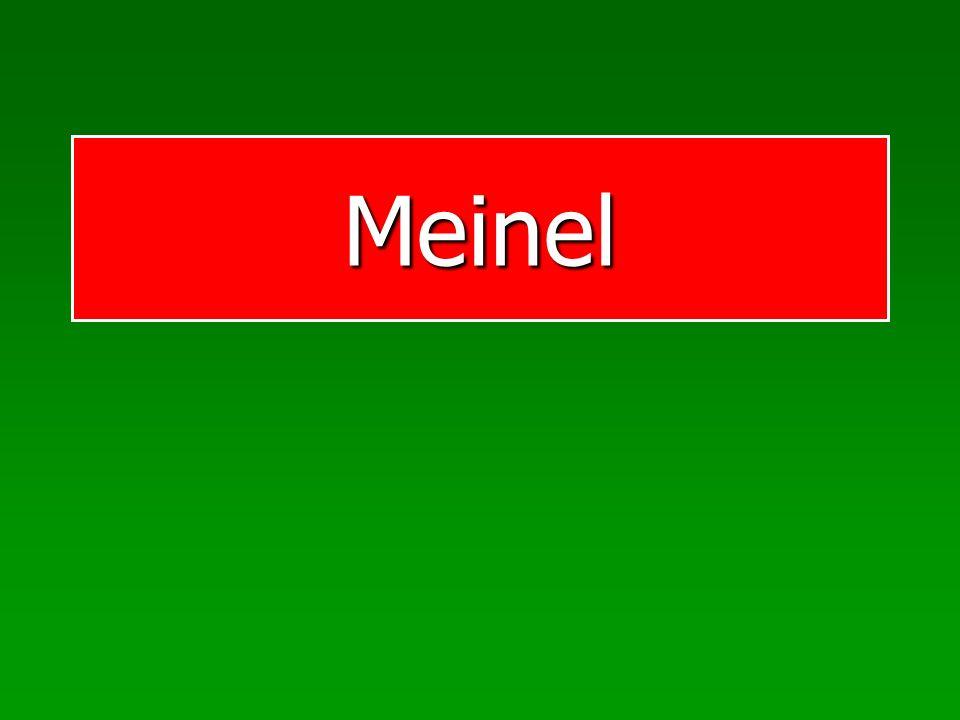 Meinel