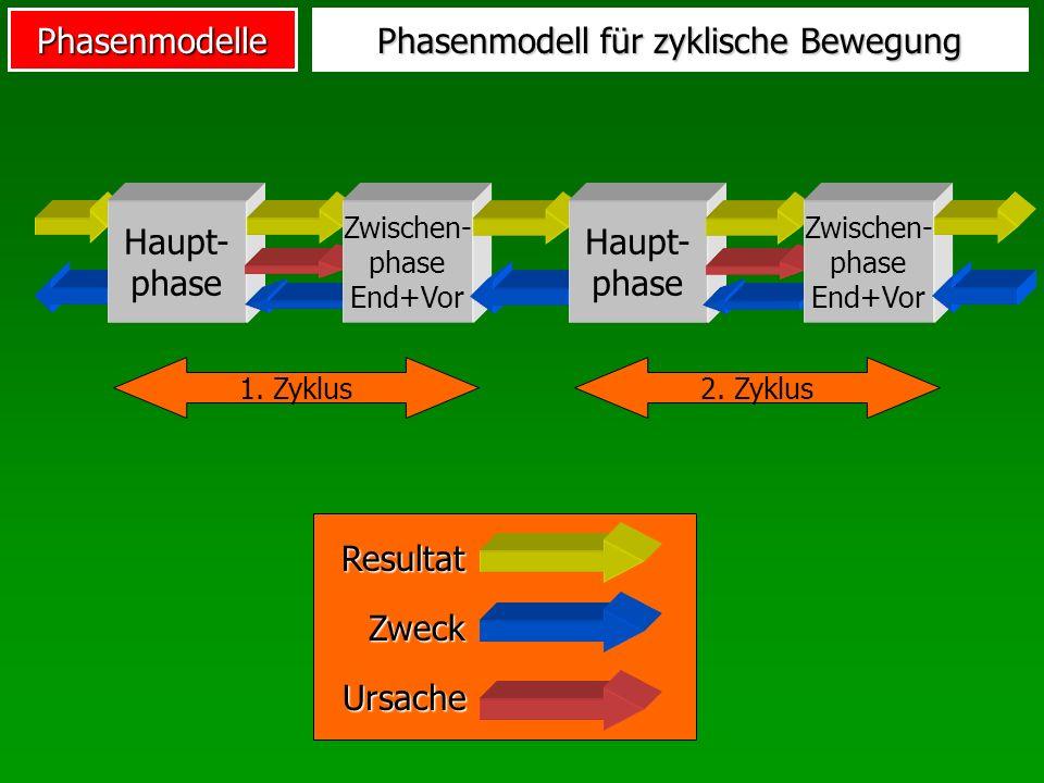 Phasenmodell für zyklische Bewegung