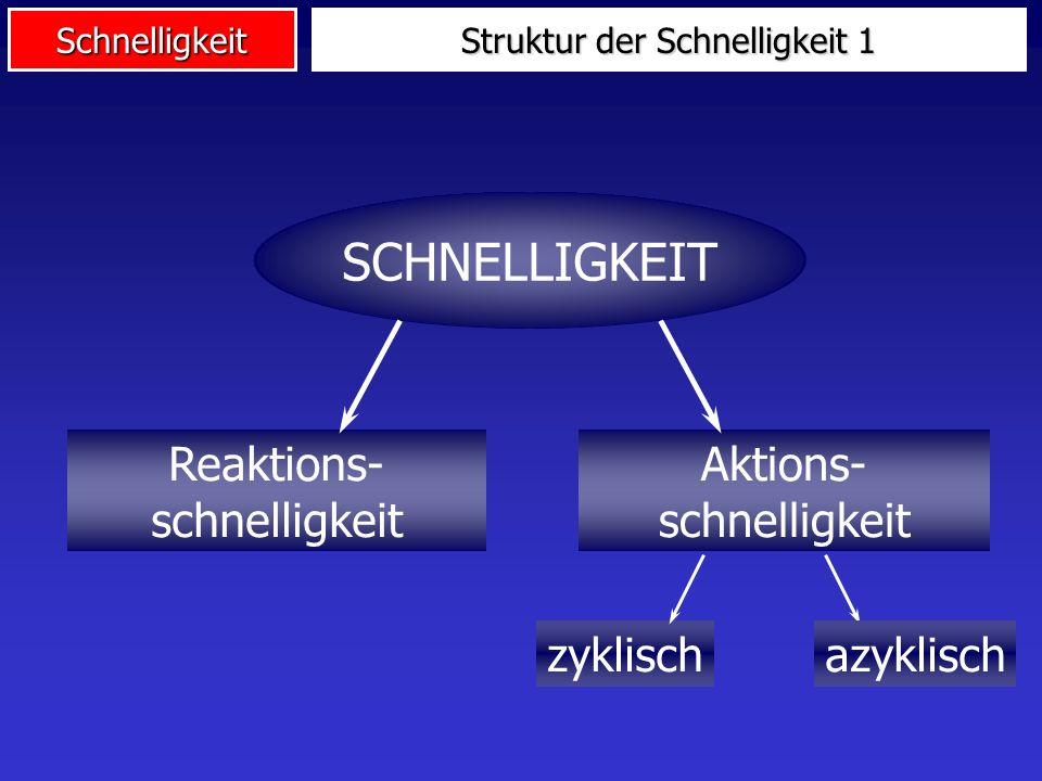 Struktur der Schnelligkeit 1