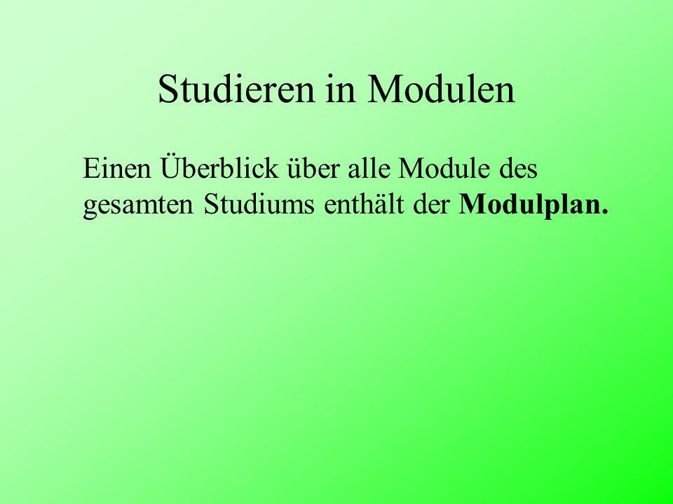 Studieren in Modulen Einen Überblick über alle Module des gesamten Studiums enthält der Modulplan.