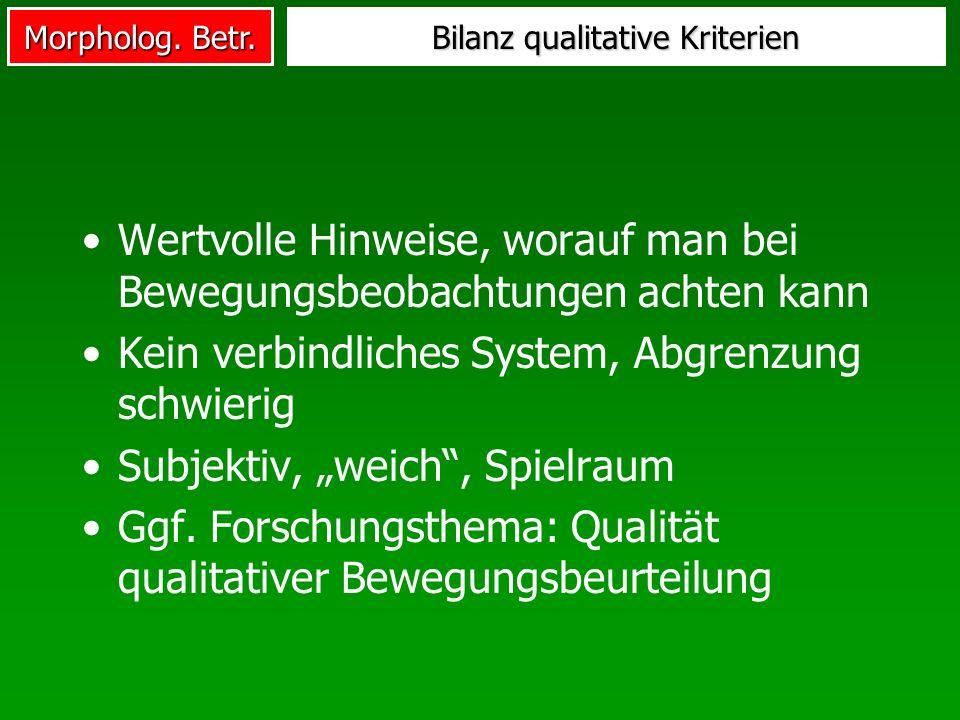 Bilanz qualitative Kriterien