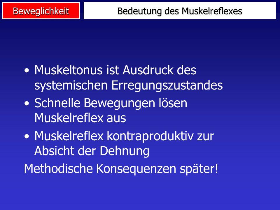 Bedeutung des Muskelreflexes