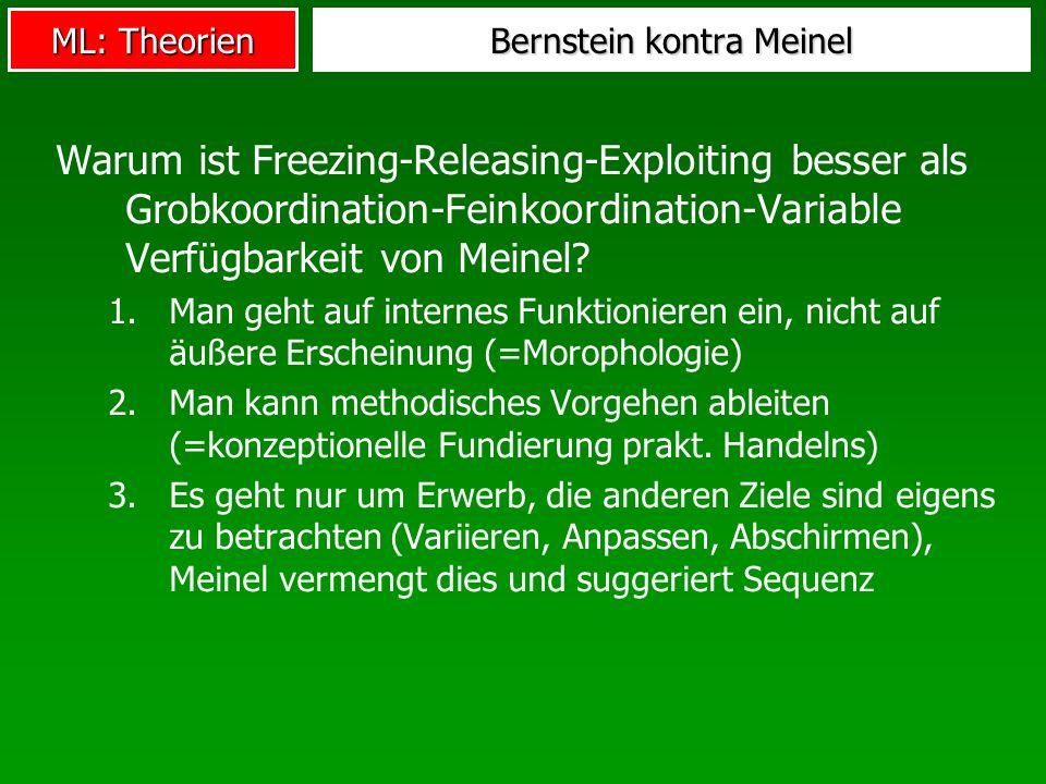 Bernstein kontra Meinel
