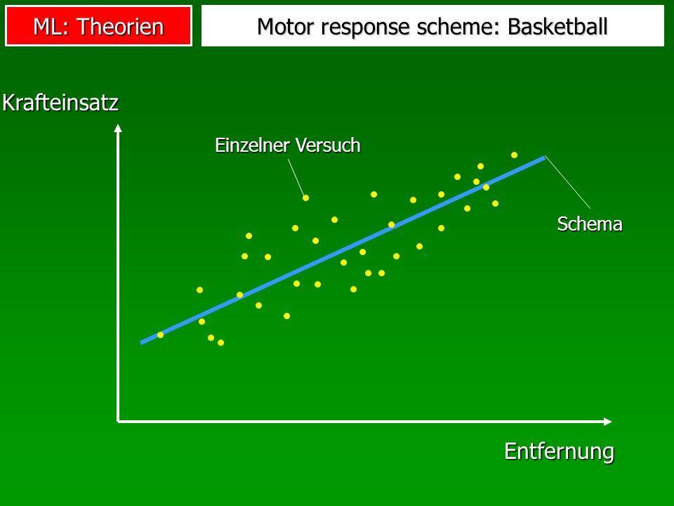 Motor response scheme: Basketball