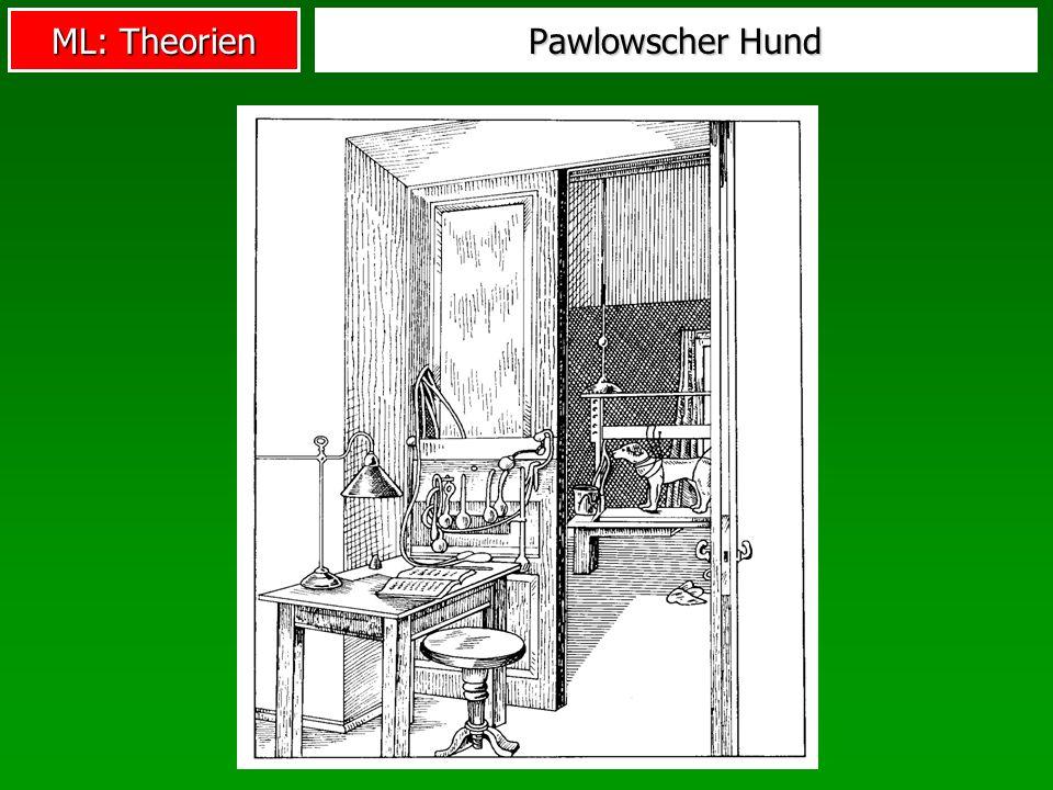 Pawlowscher Hund