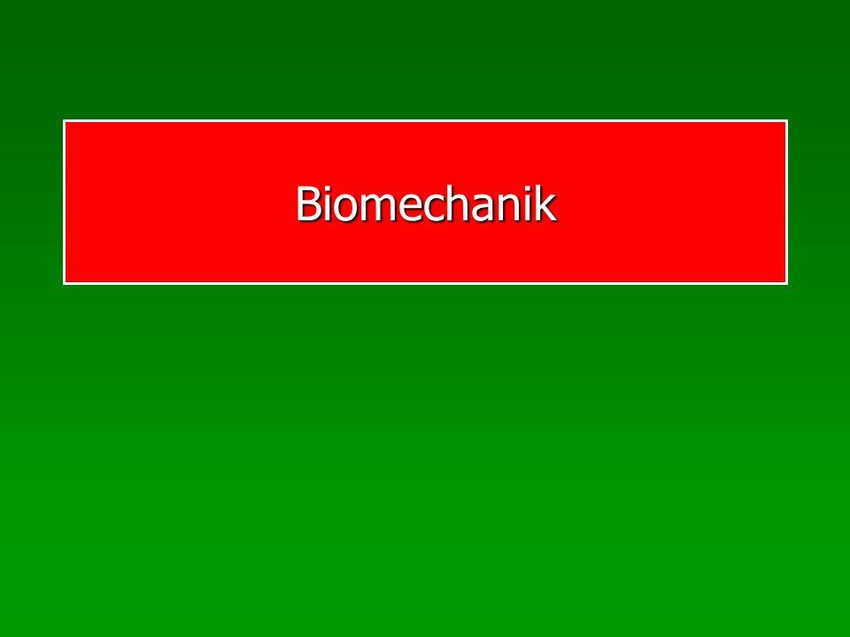 Biomechanik