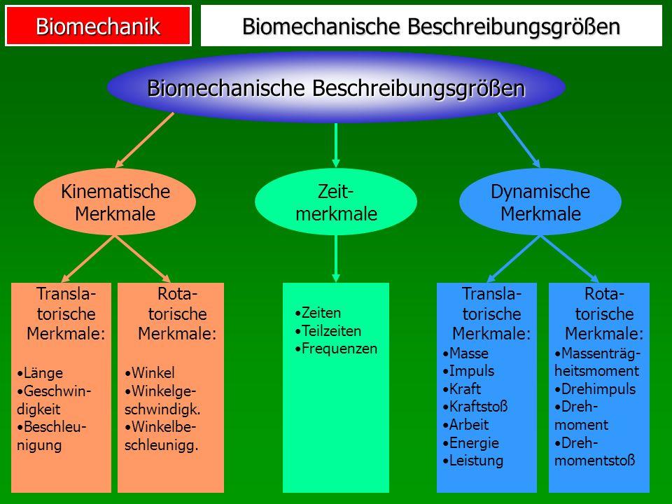 Biomechanische Beschreibungsgrößen