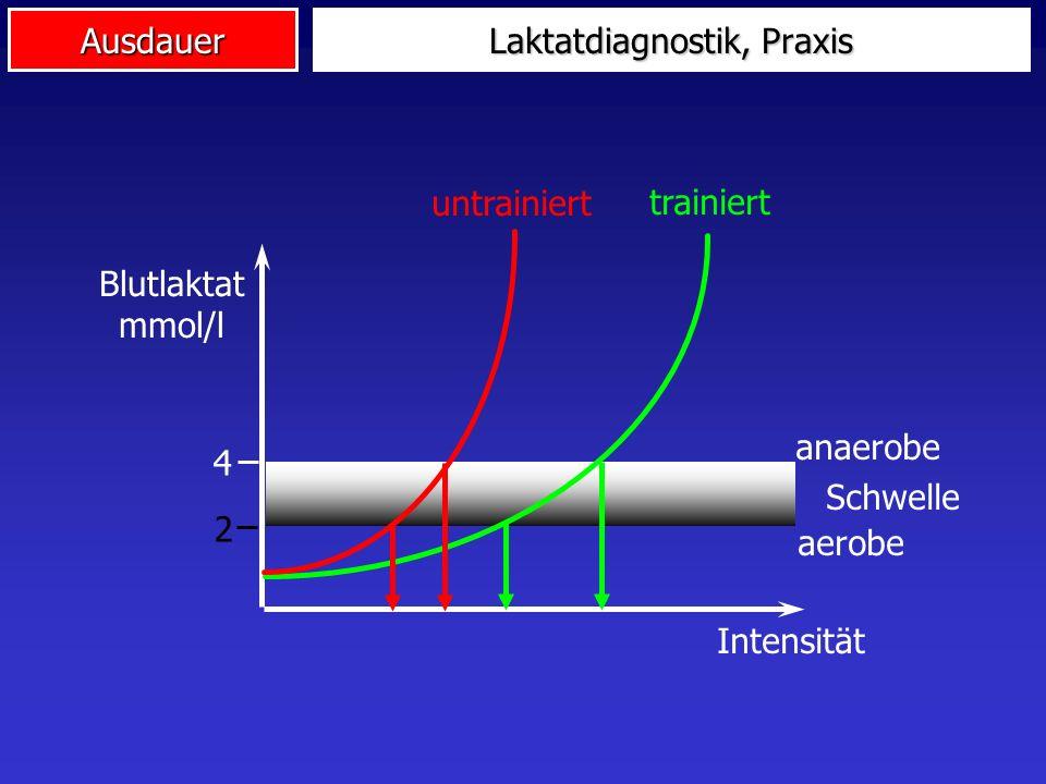 Laktatdiagnostik, Praxis