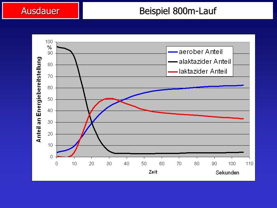 Beispiel 800m-Lauf
