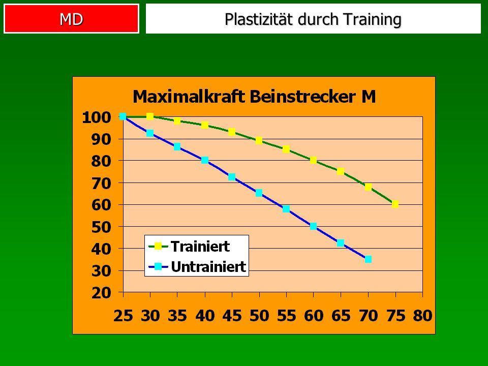Plastizität durch Training