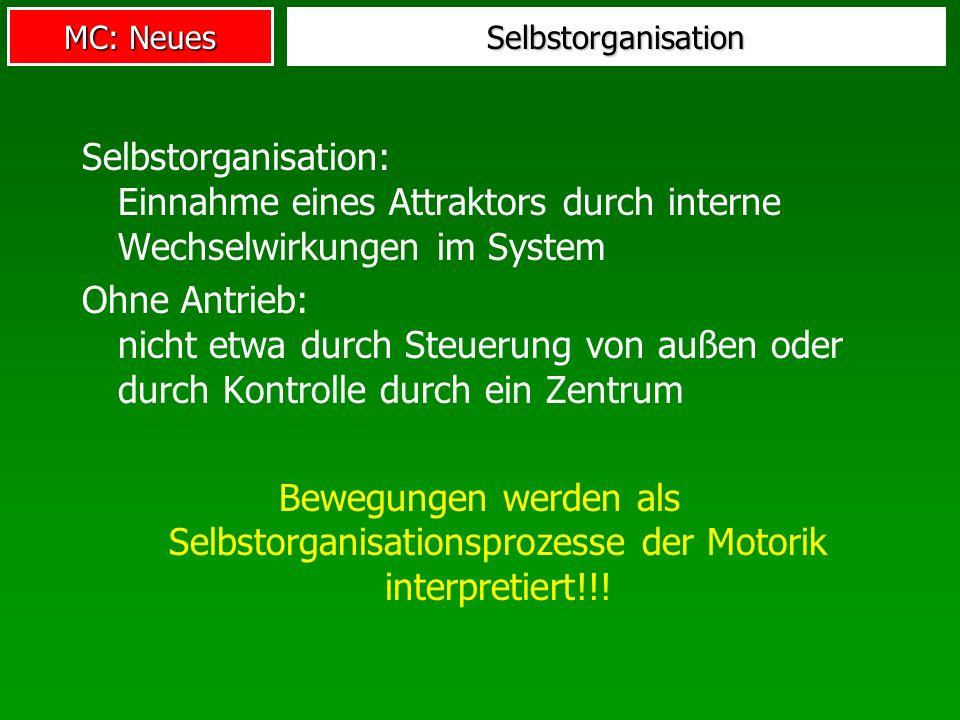 Selbstorganisation Selbstorganisation: Einnahme eines Attraktors durch interne Wechselwirkungen im System.