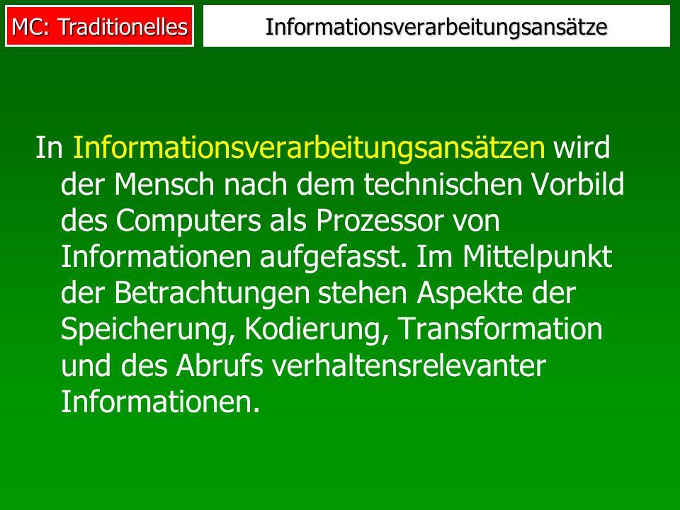 Informationsverarbeitungsansätze