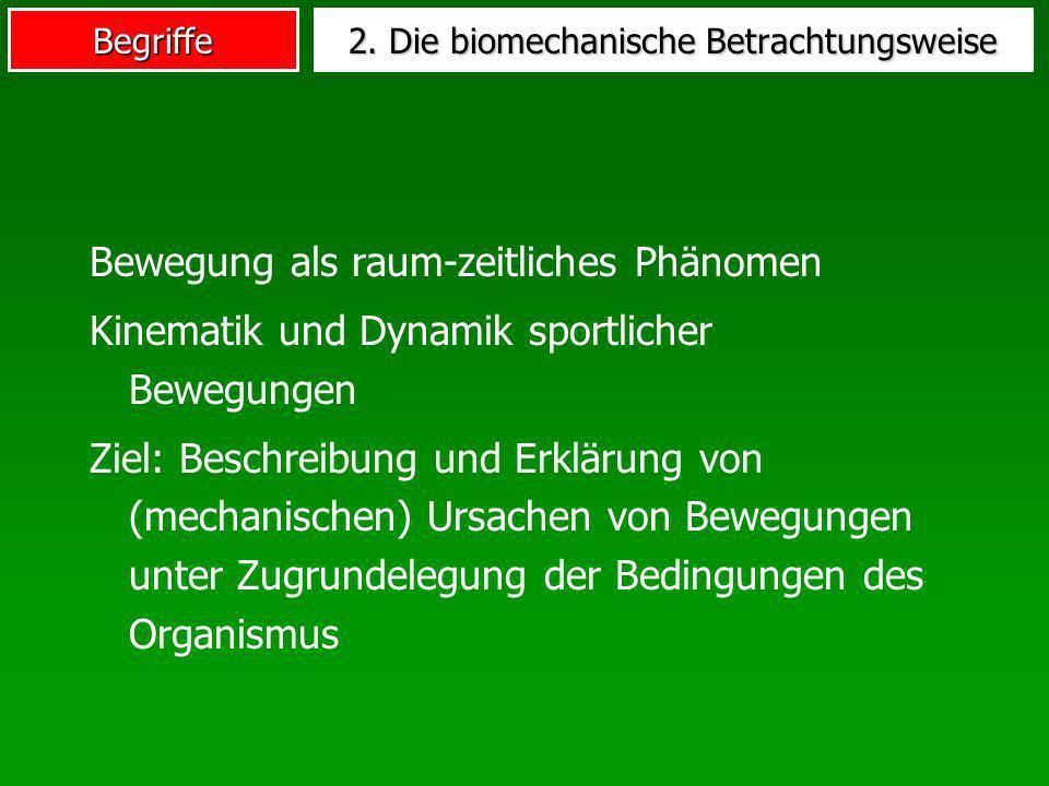 2. Die biomechanische Betrachtungsweise