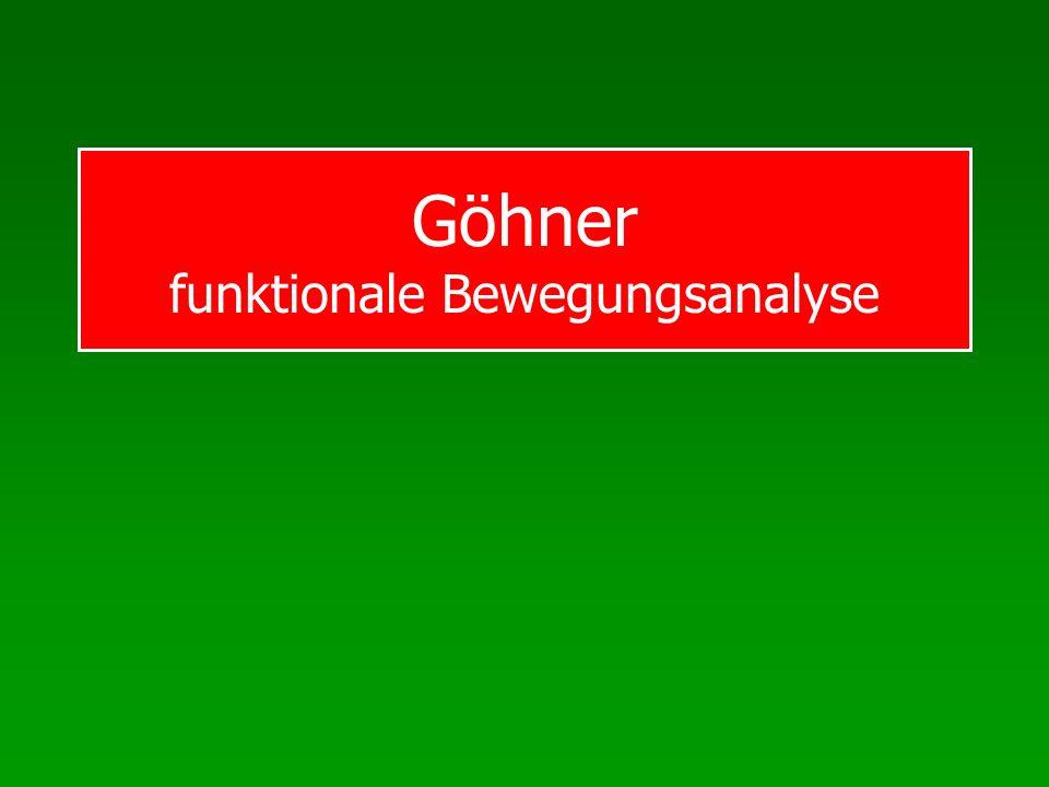Göhner funktionale Bewegungsanalyse