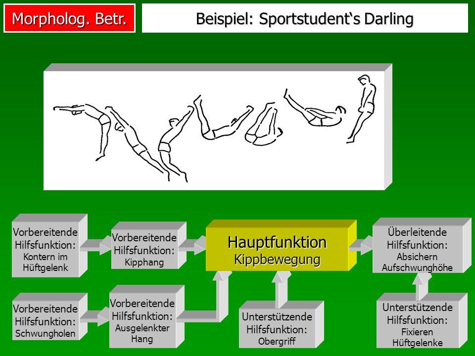 Beispiel: Sportstudent's Darling