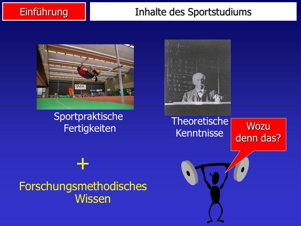 Inhalte des Sportstudiums