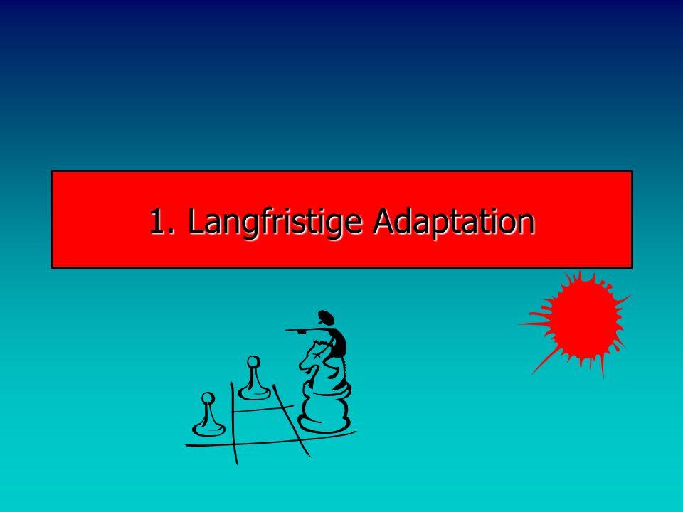1. Langfristige Adaptation