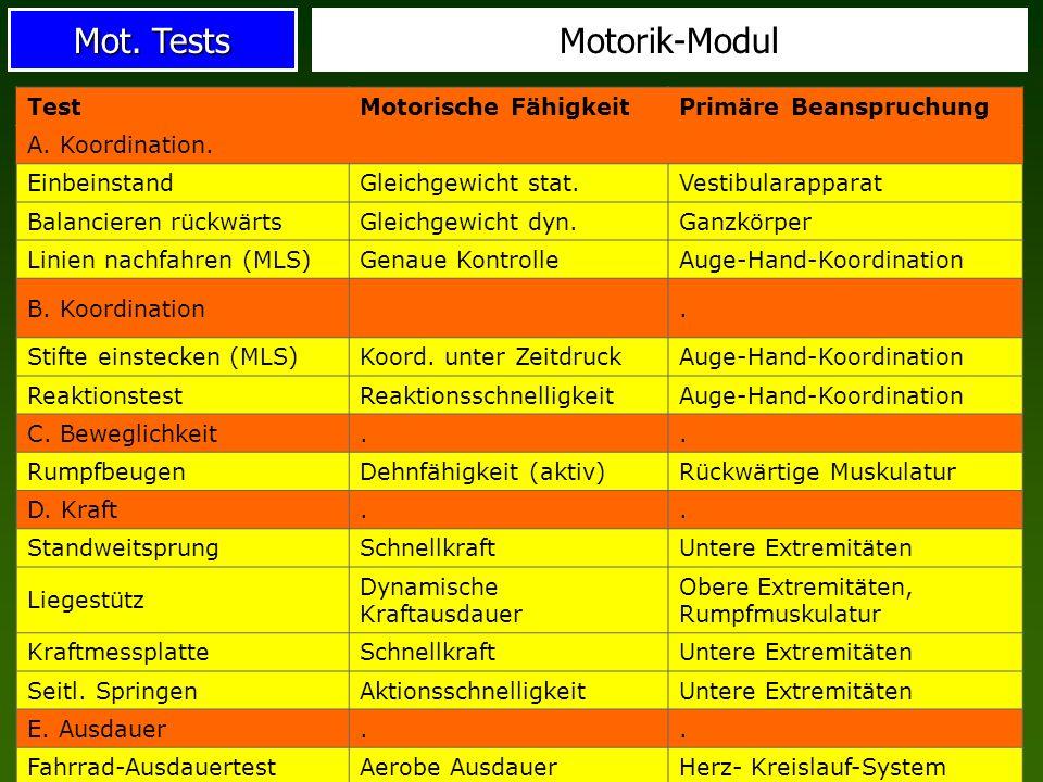 Motorik-Modul Test Motorische Fähigkeit Primäre Beanspruchung