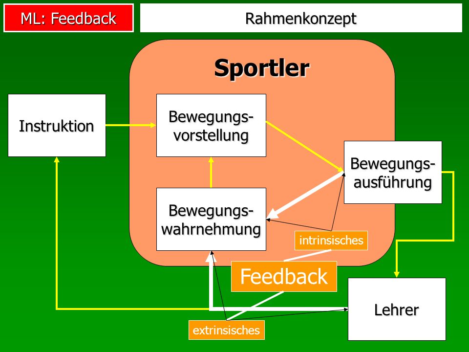 Sportler Feedback Rahmenkonzept Bewegungs-vorstellung Instruktion