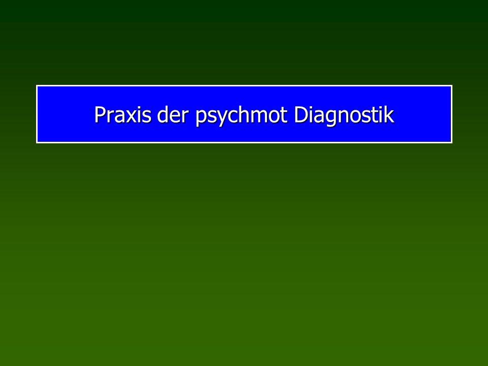 Praxis der psychmot Diagnostik