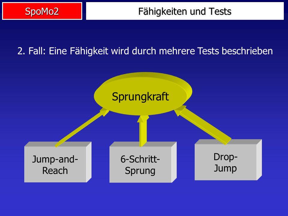 2. Fall: Eine Fähigkeit wird durch mehrere Tests beschrieben