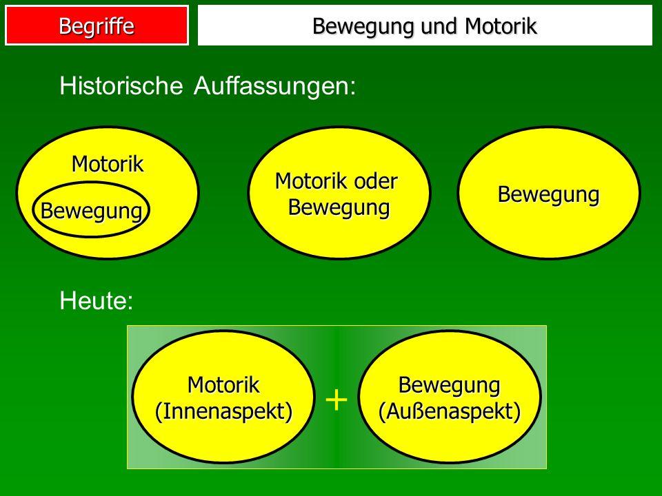 + Historische Auffassungen: Heute: Bewegung und Motorik Motorik
