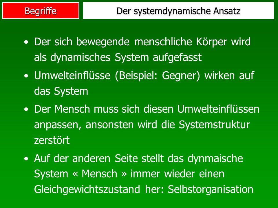 Der systemdynamische Ansatz