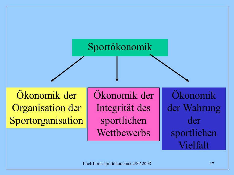 Ökonomik der Organisation der Sportorganisation