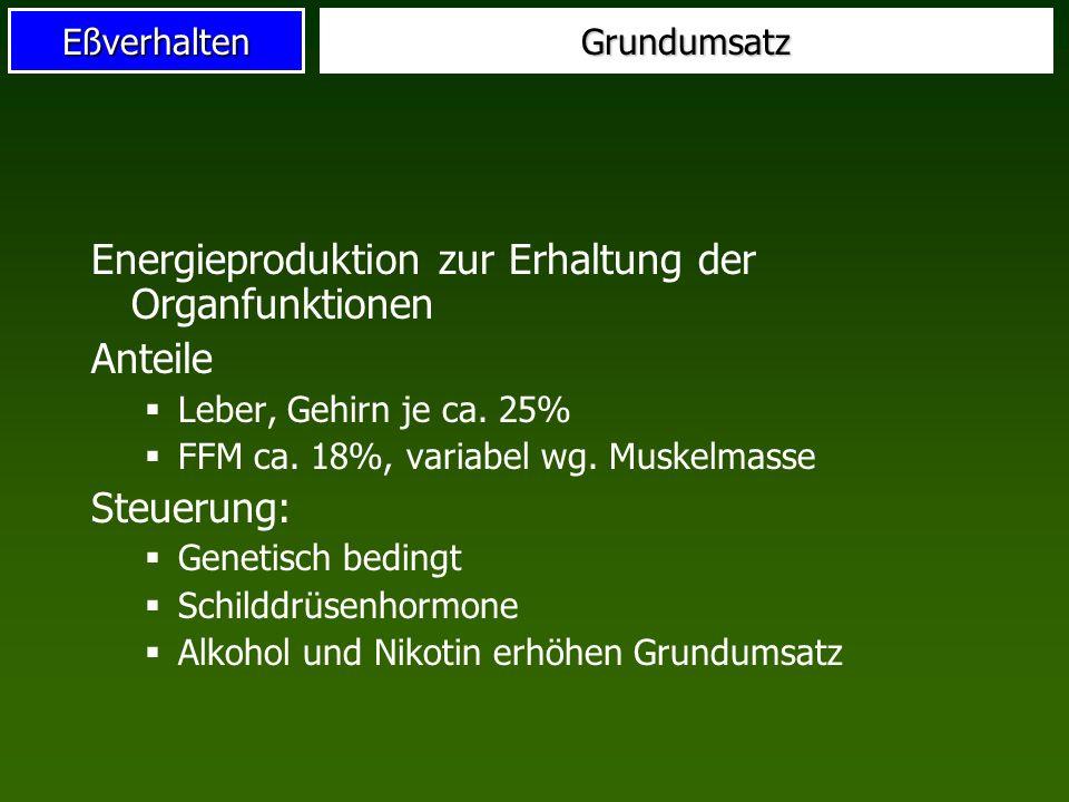 Energieproduktion zur Erhaltung der Organfunktionen Anteile