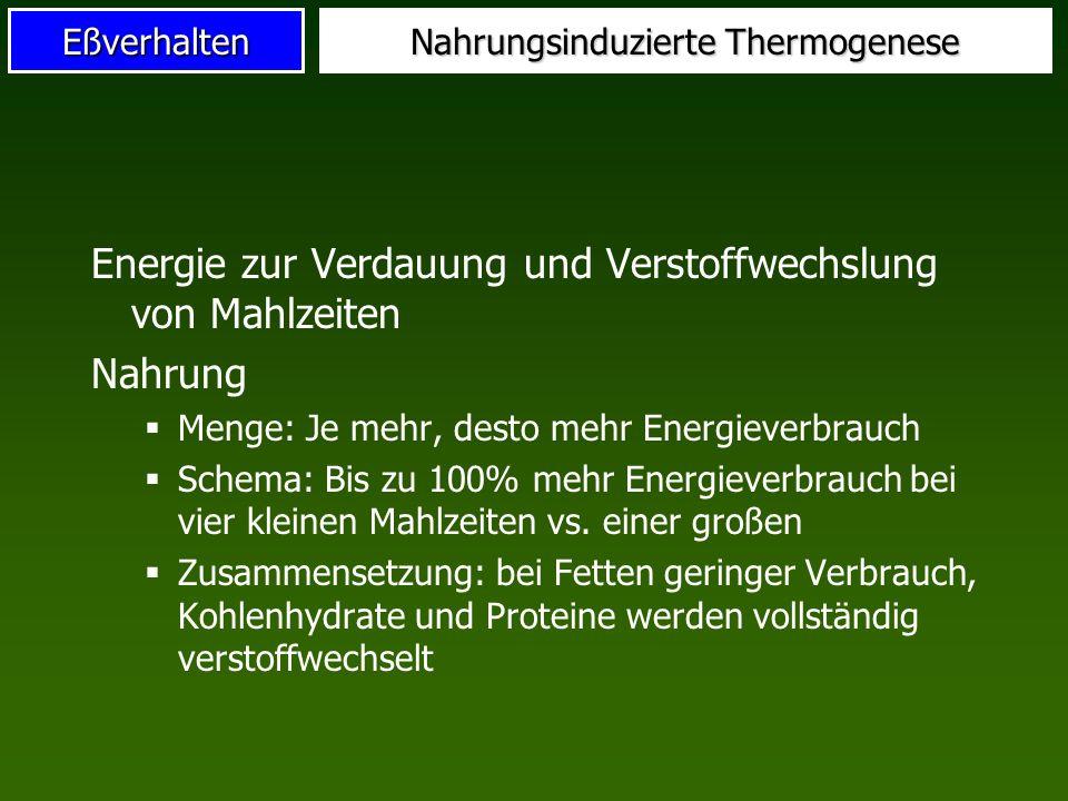 Nahrungsinduzierte Thermogenese