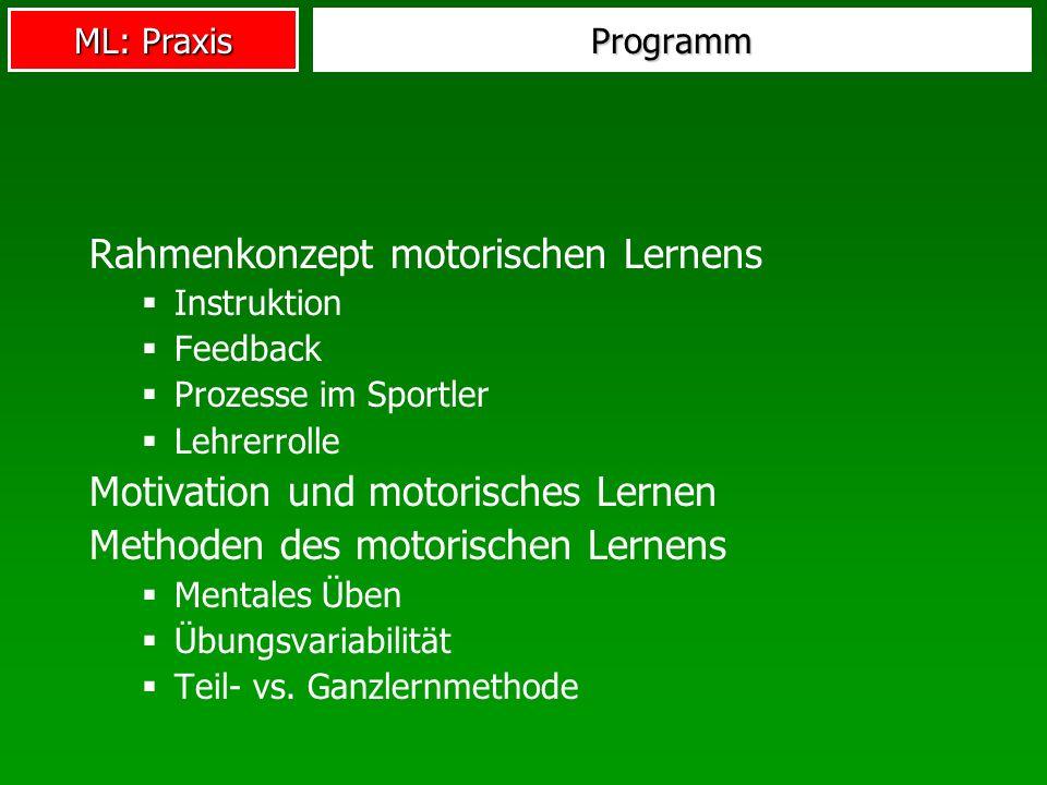Rahmenkonzept motorischen Lernens