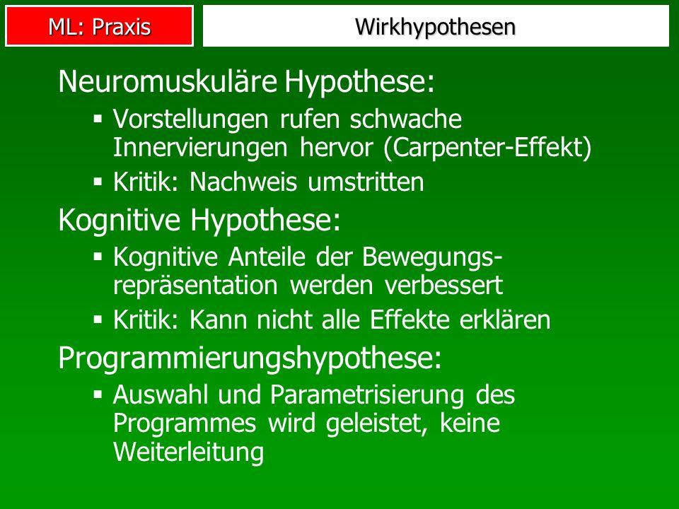 Neuromuskuläre Hypothese: