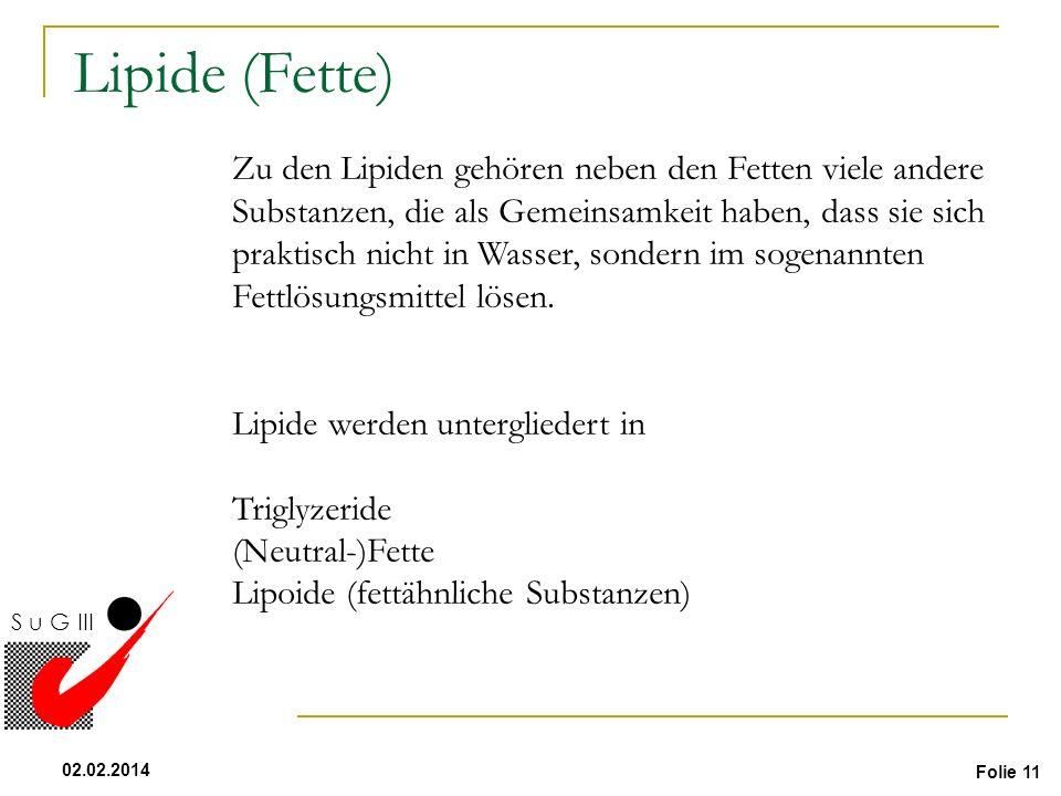 Lipide (Fette) Flüssigkeit