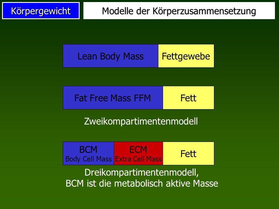 Modelle der Körperzusammensetzung