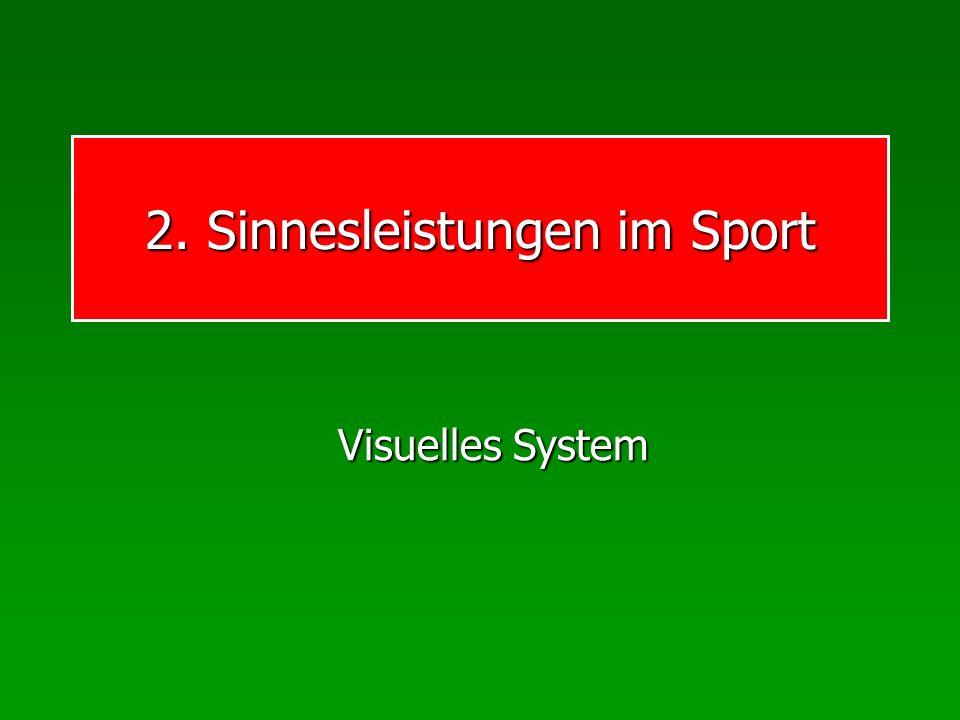 2. Sinnesleistungen im Sport